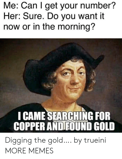 copper: Me: Can I get your number?  Her: Sure. Do you want it  now or in the morning?  I CAME SEARCHING FOR  COPPER AND FOUND GOLD Digging the gold…. by trueini MORE MEMES