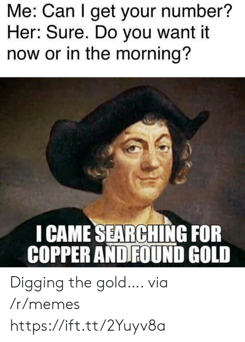 copper: Me: Can I get your number?  Her: Sure. Do you want it  now or in the morning?  I CAME SEARCHING FOR  COPPER AND FOUND GOLD Digging the gold…. via /r/memes https://ift.tt/2Yuyv8a