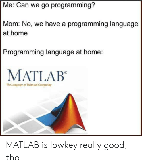 technical: Me: Can we go programming?  Mom: No, we have a programming language  at home  Programming language at home:  MATLAB  The Language of Technical Computing MATLAB is lowkey really good, tho