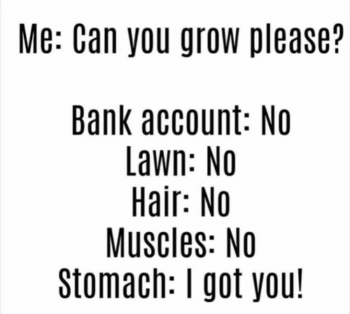 no-muscles: Me: Can you grow please?  Bank account: No  Lawn: No  Hair: No  Muscles: No  Stomach: I got you!