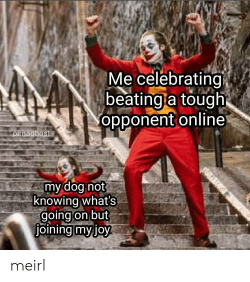 whats going on: Me celebrating  beating a tough  opponent online  oimaghost  my dog not  knowing what's  going on but  joining myjoy meirl