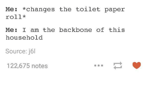Changing The Toilet Paper Roll: Me  *changes the toilet paper  roll*  Me  I am the backbone of this  household  Source: j6l  122,675 notes