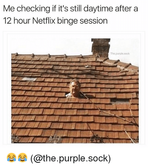 Memes, Netflix, and Purple: Me checking if it's still daytime after a  12 hour Netflix binge session  The.purple.sock 😂😂 (@the.purple.sock)