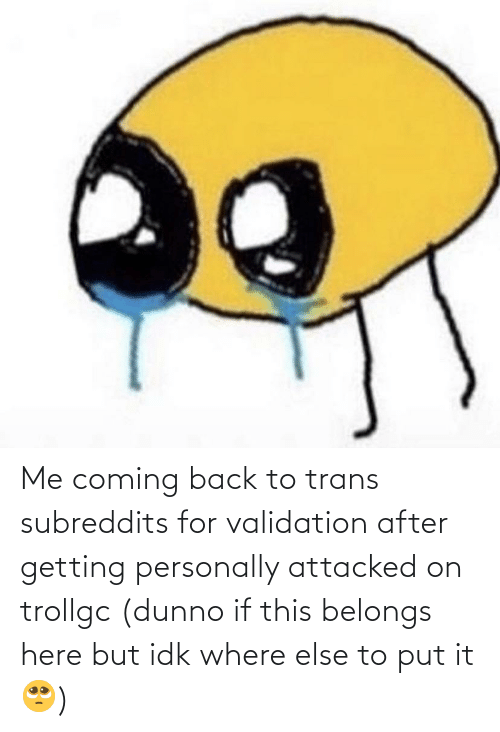 Back, For, and This: Me coming back to trans subreddits for validation after getting personally attacked on trollgc (dunno if this belongs here but idk where else to put it🥺)