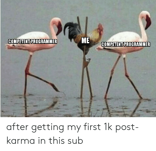 Karma: ME  COMPETENT PROGRAMMER  COMPETENT PROGRAMMER after getting my first 1k post-karma in this sub