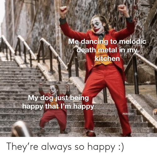My Dog: Me dancing to melodic  death metal in my  kitchen  My dog just being  happy that l'm happy  PERFECT They're always so happy :)
