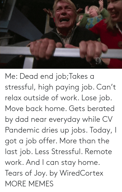 i got: Me: Dead end job;Takes a stressful, high paying job. Can't relax outside of work. Lose job. Move back home. Gets berated by dad near everyday while CV Pandemic dries up jobs. Today, I got a job offer. More than the last job. Less Stressful. Remote work. And I can stay home. Tears of Joy. by WiredCortex MORE MEMES