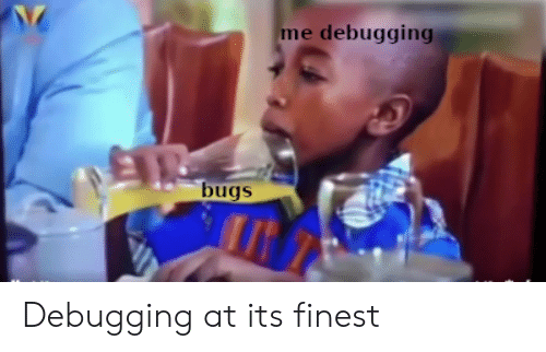 Finest: me debugging  bugs Debugging at its finest