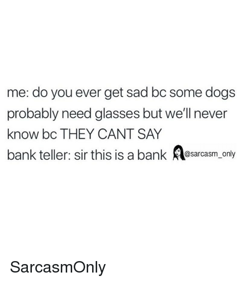 bank teller: me: do you ever get sad bc some dogs  probably need glasses but we'll never  know bc THEY CANT SAY  bank teller: sir this is a bank Asarcasm_ only SarcasmOnly