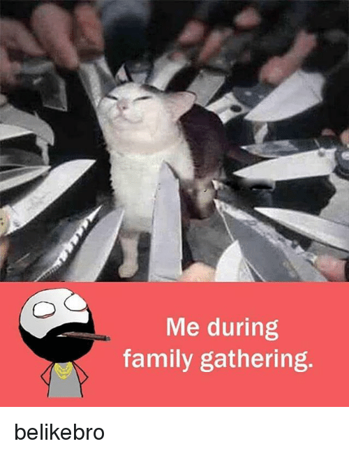 memes: Me during  family gathering. belikebro