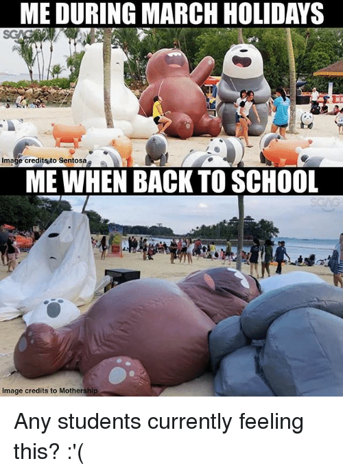 Memes, School, and Image: ME DURING MARCH HOLIDAYS  Image credits to Sentosa  ME WHEN BACK TO SCHOOL  Image credits to Mothership Any students currently feeling this? :'(