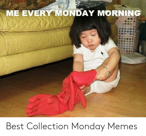 Monday Memes: ME EVERY MONDAY MORNING  FunnyBeing co Best Collection Monday Memes