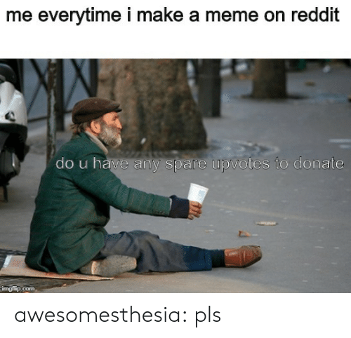 Make A Meme: me everytime i make a meme on reddit  do u have any spare upvotes to donate  imgflip.com awesomesthesia:  pls