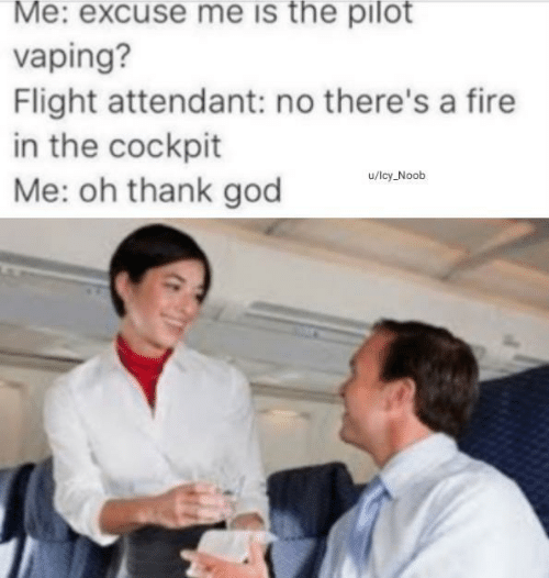 Flight Attendant: Me: excuse me is the pilot  vaping?  Flight attendant: no there's a fire  in the cockpit  Me: oh thank god  u/lcy Noob