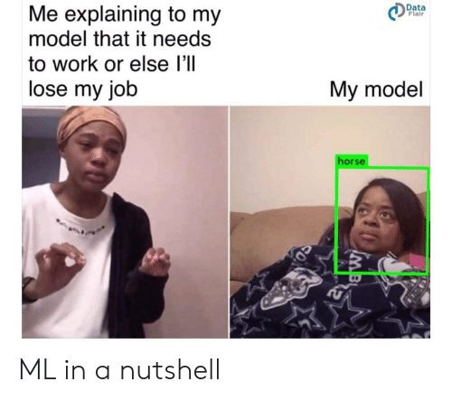 Me Explaining: Me explaining to my  model that it needs  Data  Flair  to work or else l'll  lose my job  My model  horse ML in a nutshell