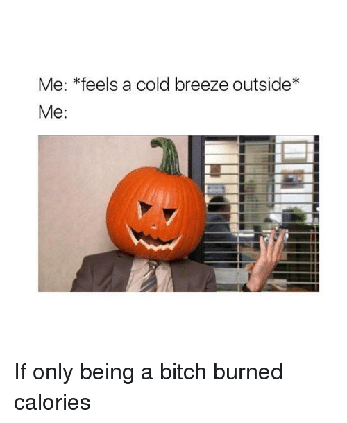 Bitch, Girl Memes, and Cold: Me: *feels a cold breeze outside*  Me: If only being a bitch burned calories