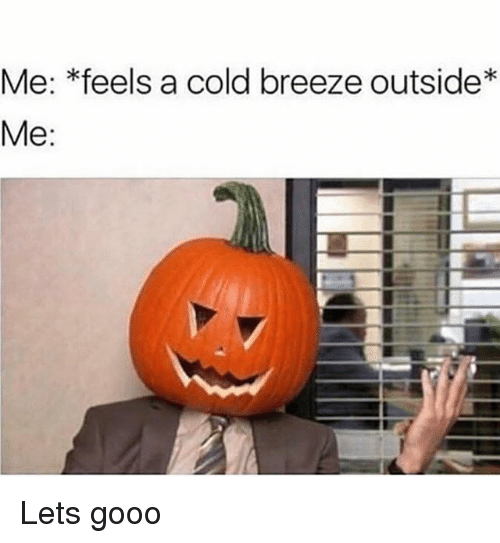 Funny, Gooo, and Cold: Me: *feels a cold breeze outside*  Me Lets gooo
