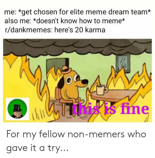 Meme Dream Team: me: *get chosen for elite meme dream team*  also me: *doesn't know how to meme*  r/dankmemes: here's 20 karma  this is fine For my fellow non-memers who gave it a try...