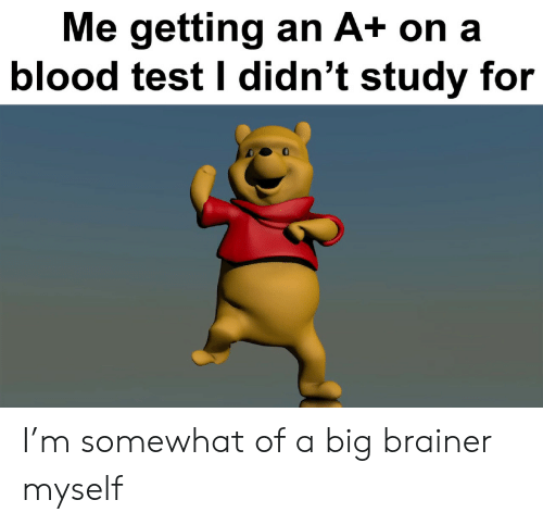 Somewhat Of: Me getting an A+ on a  blood test I didn't study for I'm somewhat of a big brainer myself