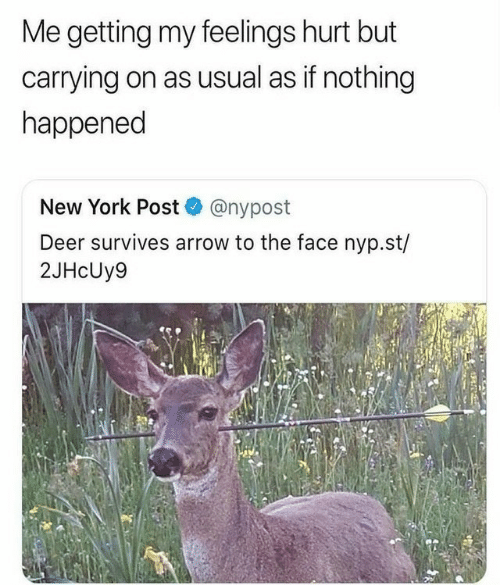 New York Post: Me getting my feelings hurt but  carrying on as usual as if nothing  happened  New York Post @nypost  Deer survives arrow to the face nyp.st/  2JHcUy9