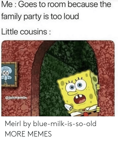 Too Loud: Me: Goes to room because the  family party is too loud  Little cousins  00  Jahmemin Meirl by blue-milk-is-so-old MORE MEMES