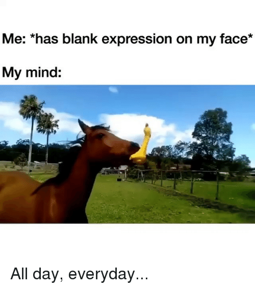Memes, Mind, and Blank: Me: *has blank expression on my face*  My mind: All day, everyday...