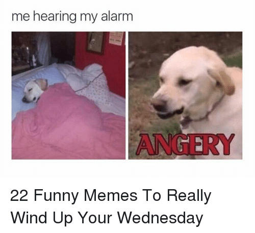 Funny, Memes, and Alarm: me hearing my alarm  ANGER 22 Funny Memes To Really Wind Up Your Wednesday