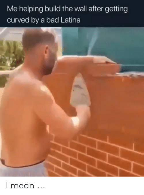 build-the-wall: Me helping build the wall after getting  curved by a bad Latina I mean ...
