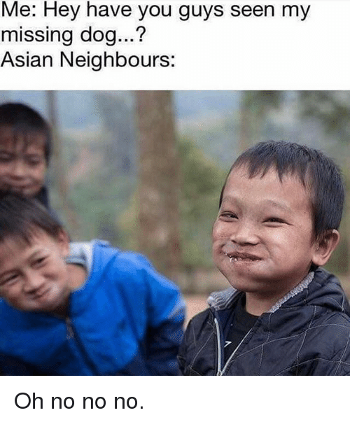 Asian, Memes, and 🤖: Me: Hey have you guys seen my  missing dog...?  Asian Neighbours: Oh no no no.