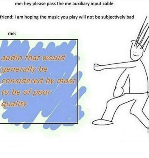 Dank Memes: me: hey please pass the me auxiliary input cable  friend: i am hoping the music you play will not be subjectively bad  me:  audio that would  generally be  Considered by most  to be of poor  quality