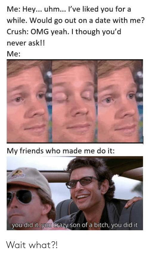 You Crazy: Me: Hey... uhm... I've liked you for a  while. Would go out on a date with me?  Crush: OMG yeah. I though you'd  never ask!!  Me:  My friends who made me do it:  you did it. you crazy son of a bitch, you did it Wait what?!