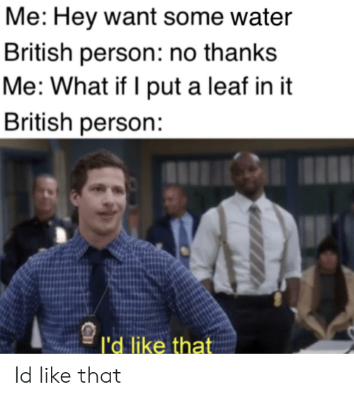 A Leaf: Me: Hey want some water  British person: no thanks  Me: What if I put a leaf in it  British person:  l'd like that Id like that