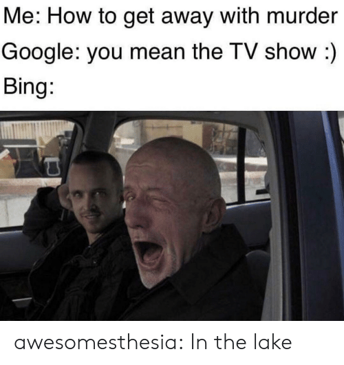 tv show: Me: How to get away with murder  Google: you mean the TV show :)  Bing: awesomesthesia:  In the lake