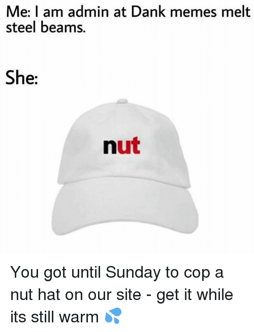 Dank Memes Melt Steel Beams: Me: I am admin at Dank memes melt  steel beams.  She:  nut You got until Sunday to cop a nut hat on our site - get it while its still warm 💦