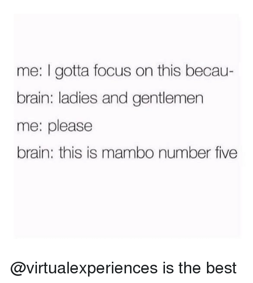 Best, Brain, and Focus: me: I gotta focus on this becau-  brain: ladies and gentlemen  me: please  brain: this is mambo number five @virtualexperiences is the best