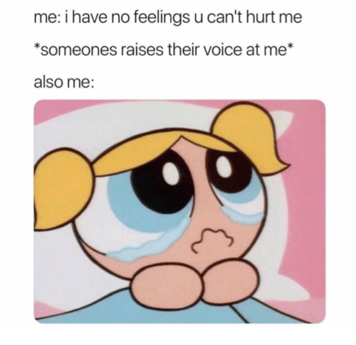 Voice, Their, and Feelings: me: i have no feelings u can't hurt me  *someones raises their voice at me*  also me: