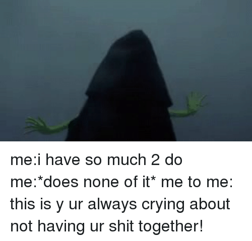 Funny, It's Me, and  Do Me: me:i have so much 2 do me:*does none of it* me to me: this is y ur always crying about not having ur shit together!