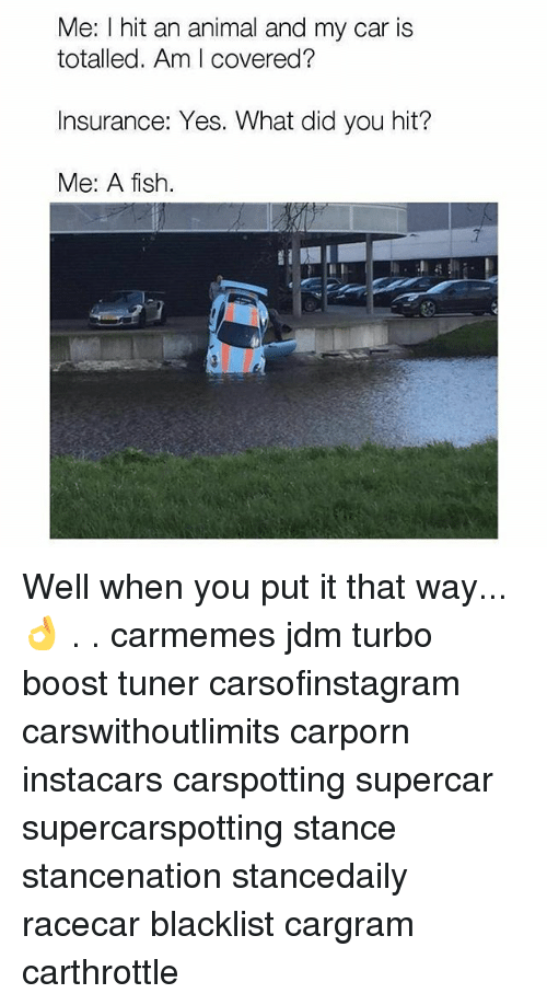 Memes, Animal, and Boost: Me: I hit an animal and my car is  totalled. Am I covered?  Insurance: Yes. What did you hit?  Me: A fish.  7 Well when you put it that way... 👌 . . carmemes jdm turbo boost tuner carsofinstagram carswithoutlimits carporn instacars carspotting supercar supercarspotting stance stancenation stancedaily racecar blacklist cargram carthrottle