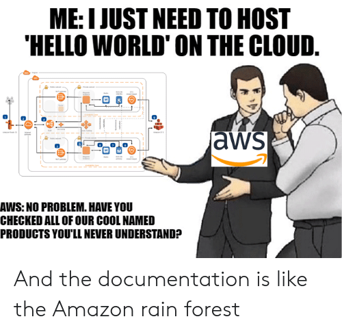 aws: ME: I JUST NEED TO HOST  HELLO WORLD' ON THE CLOUD.  aws  AWS: NO PROBLEM. HAVE YOU  CHECKED ALL OF OUR COOL NAMED  PRODUCTS YOU'LL NEVER UNDERSTAND? And the documentation is like the Amazon rain forest