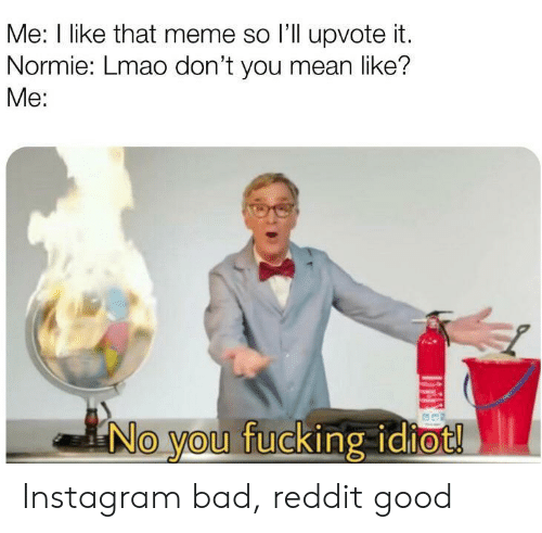 Normie: Me: I like that meme so l'll upvote it.  Normie: Lmao don't you mean like?  Me:  No you fucking idiot! Instagram bad, reddit good