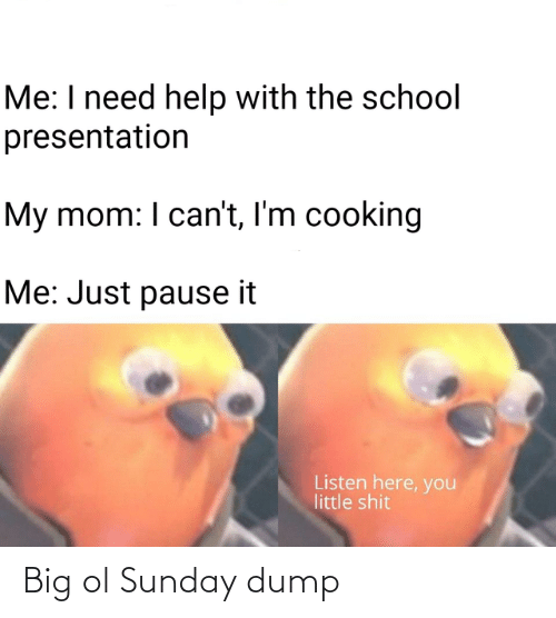 Listen Here: Me: I need help with the school  presentation  My mom: I can't, I'm cooking  Me: Just pause it  Listen here, you  little shit Big ol Sunday dump