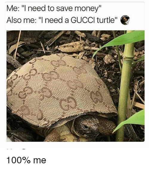 "Anaconda, Memes, and Money: Me: ""I need to save money""  Also me: ""l need a GUCCl turtle"" 100% me"