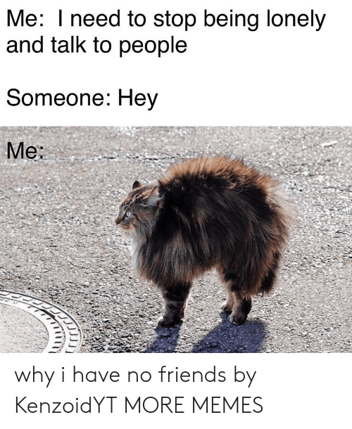 i have no friends: Me: I need to stop being lonely  and talk to people  Someone: Hey  Me: why i have no friends by KenzoidYT MORE MEMES