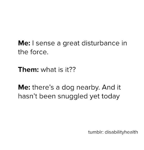 Disturbance In The Force: Me: I sense a great disturbance in  the force.  Them: what is it??  Me: there's a dog nearby. And it  hasn't been snuggled yet today  tumblr: disabilityhealth