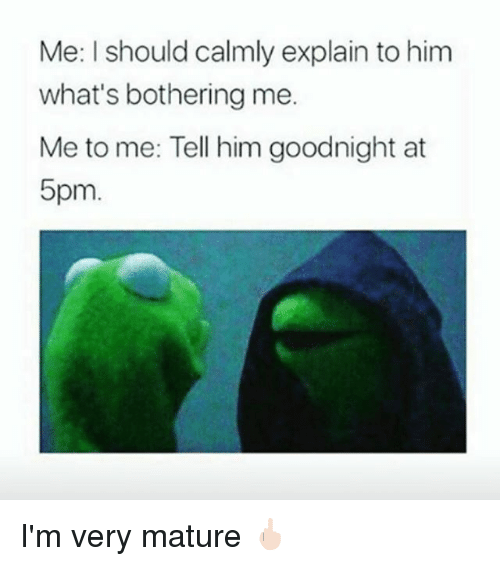 Girl Memes, Him, and Whats: Me: I should calmly explain to him  what's bothering me.  Me to me: Tell him goodnight at  5pm I'm very mature 🖕🏻