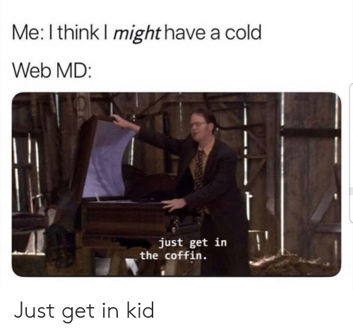 Web Md: Me: I think I might have a cold  Web MD:  just get in  the coffin Just get in kid