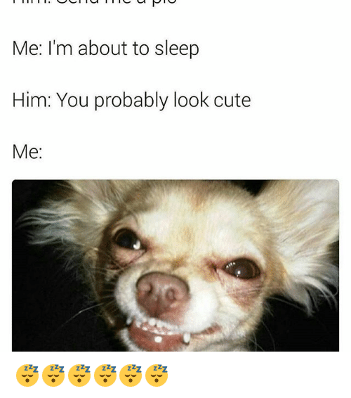 cuteness: Me: I'm about to sleep  Him: You probably look cute  Me 😴😴😴😴😴😴