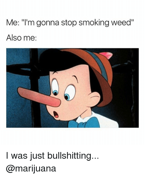 "Smoking, Weed, and Marijuana: Me: ""I'm gonna stop smoking weed""  Also me: I was just bullshitting... @marijuana"