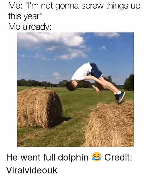 """Dolphin: Me: """"I'm not gonna screw things up  this year  Me already He went full dolphin 😂  Credit: Viralvideouk"""