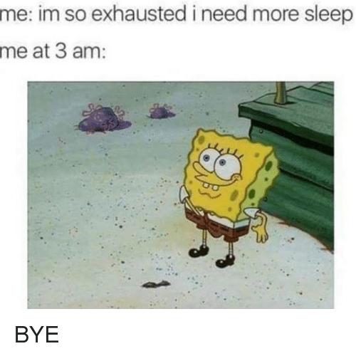 Memes, 🤖, and Bye: me: im so exhausted i need more sleep  me at 3 am BYE